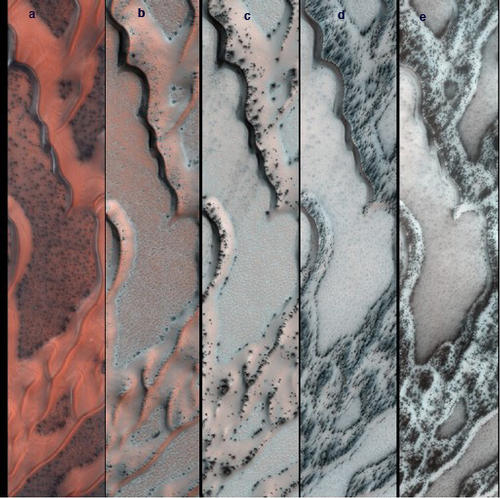 The High Resolution Imaging Science Experiment (HiRISE) camera on NASA's Mars Reconnaissance Orbiter snapped this series of false-color pictures of sand dunes in the north polar region of Mars