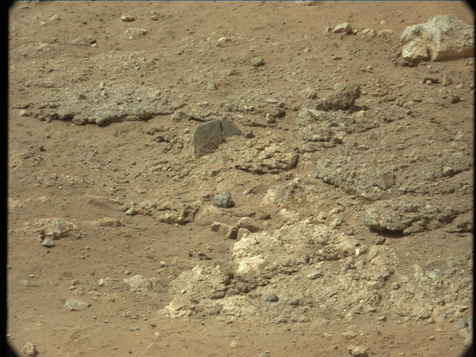 nasa mars lizard - photo #15