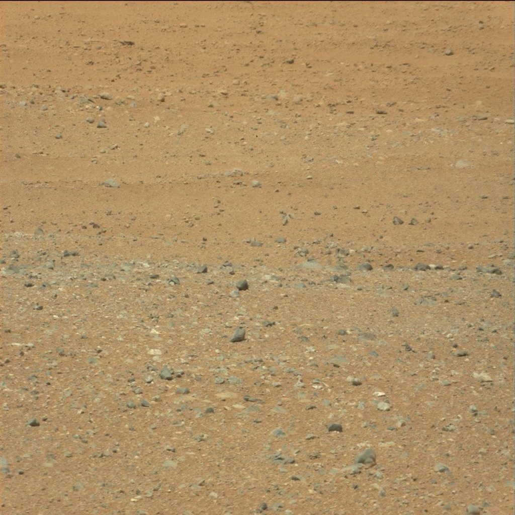 NASA's Mars rover Curiosity acquired this image using its Mast Camera (Mastcam) on Sol 21