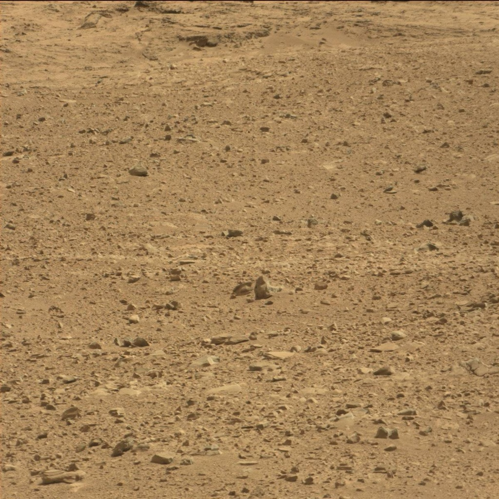 NASA's Mars rover Curiosity acquired this image using its Mast Camera (Mastcam) on Sol 51