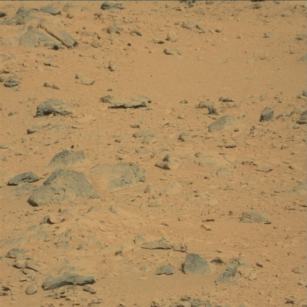 NASA's Mars rover Curiosity acquired this image using its Mast Camera (Mastcam) on Sol 53