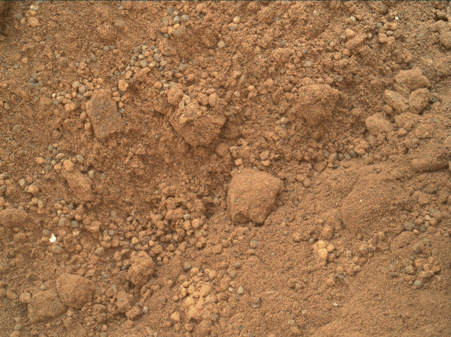 Rendezvous Mars Science Lab Curiosity: Sparkling bits in ...