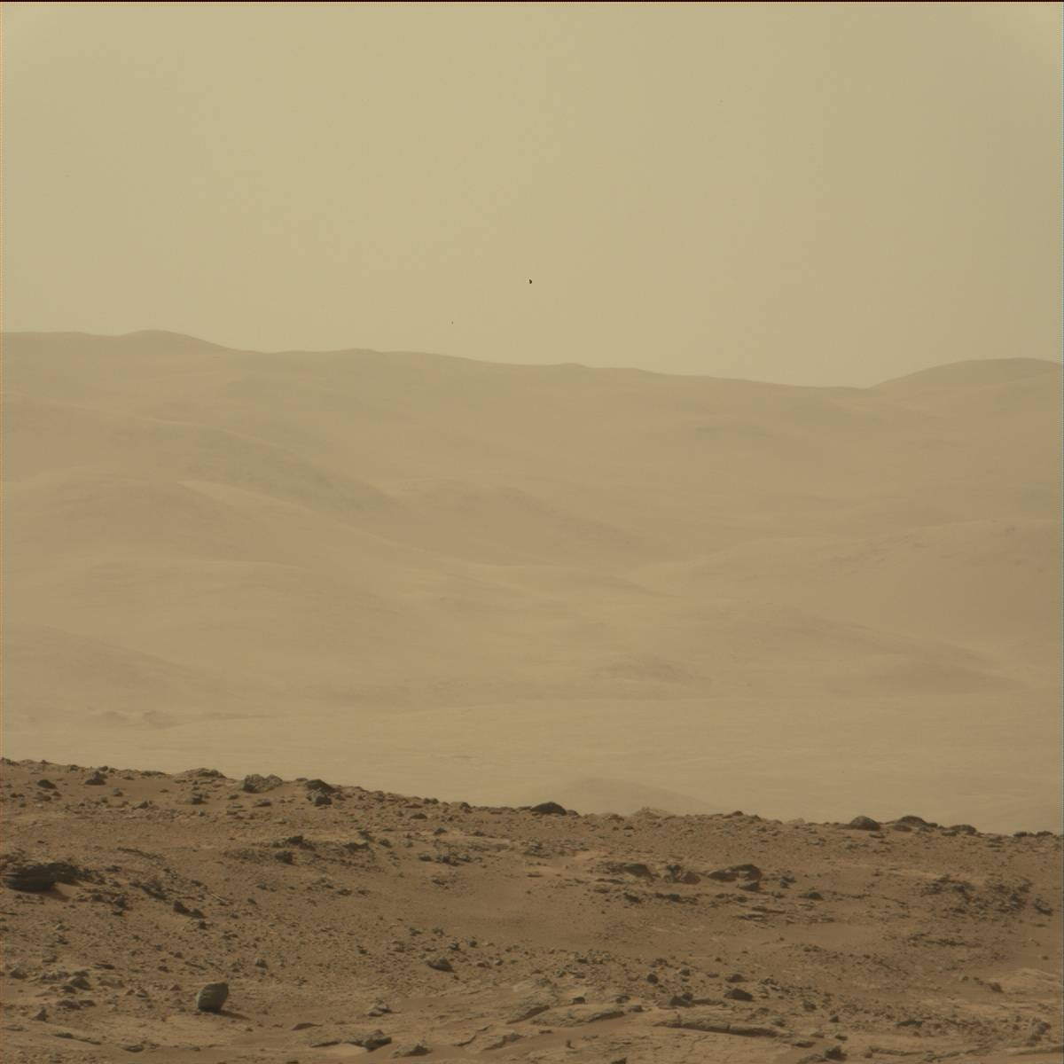 rover 75 mars - photo #46