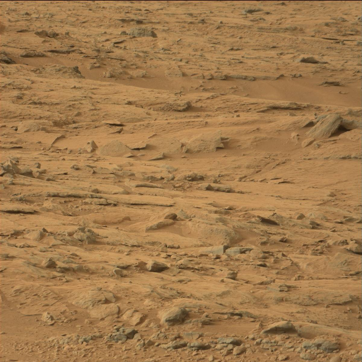 mars rover discovery - photo #27