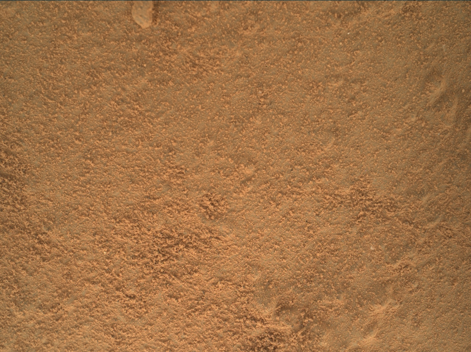 Nasa's Mars rover Curiosity acquired this image using its Mars Hand Lens Imager (MAHLI) on Sol 168