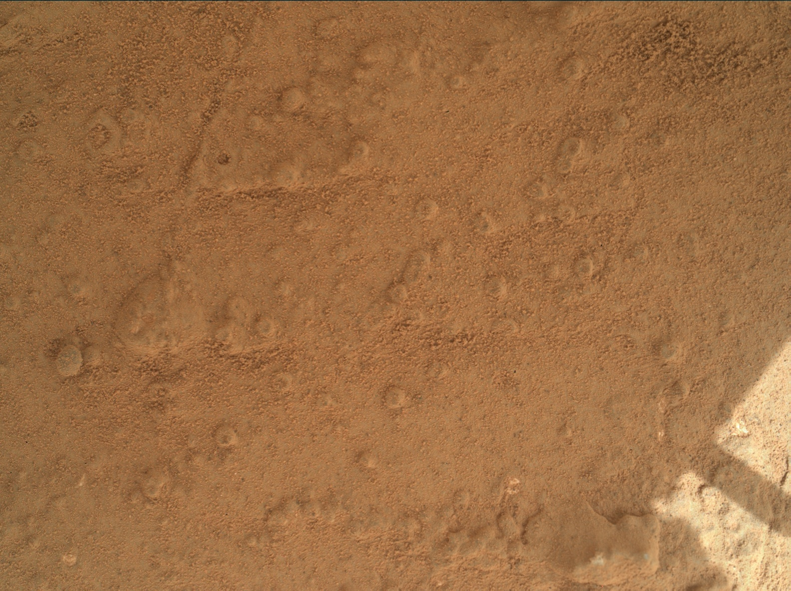 Nasa's Mars rover Curiosity acquired this image using its Mars Hand Lens Imager (MAHLI) on Sol 169