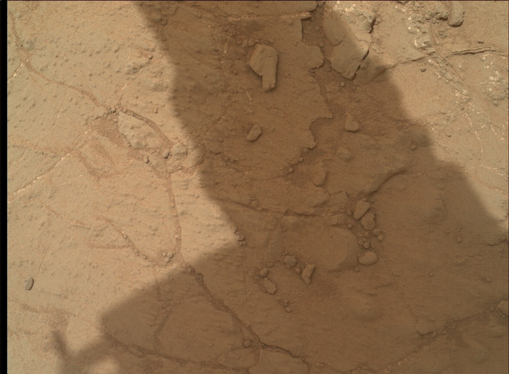 NASA's Mars rover Curiosity acquired this image using its Mars Hand Lens Imager (MAHLI) on Sol 170