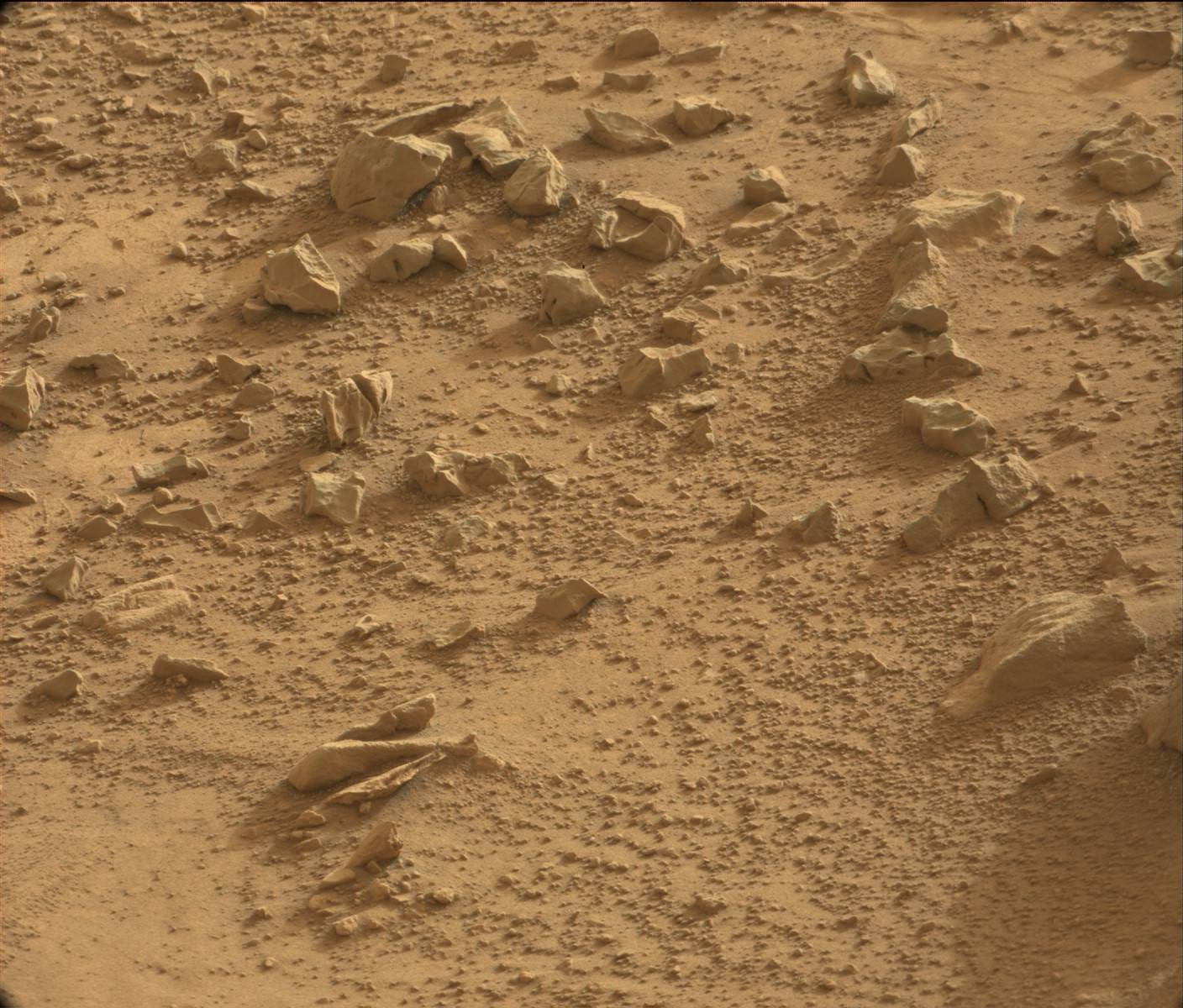 Mars fossils tools carved stone