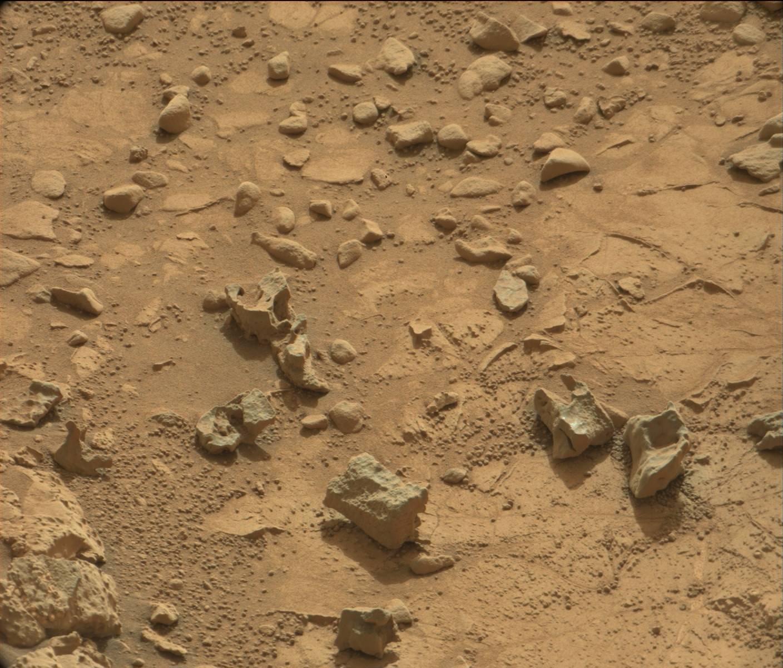 Life on Mars - Visual Investigation