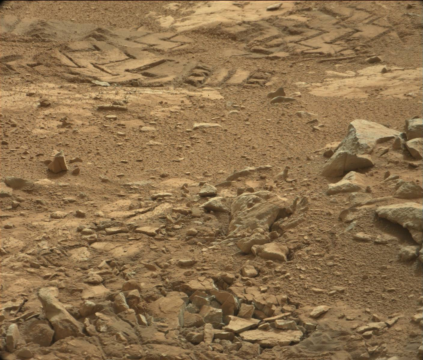 nasa pictures of life on mars - photo #12
