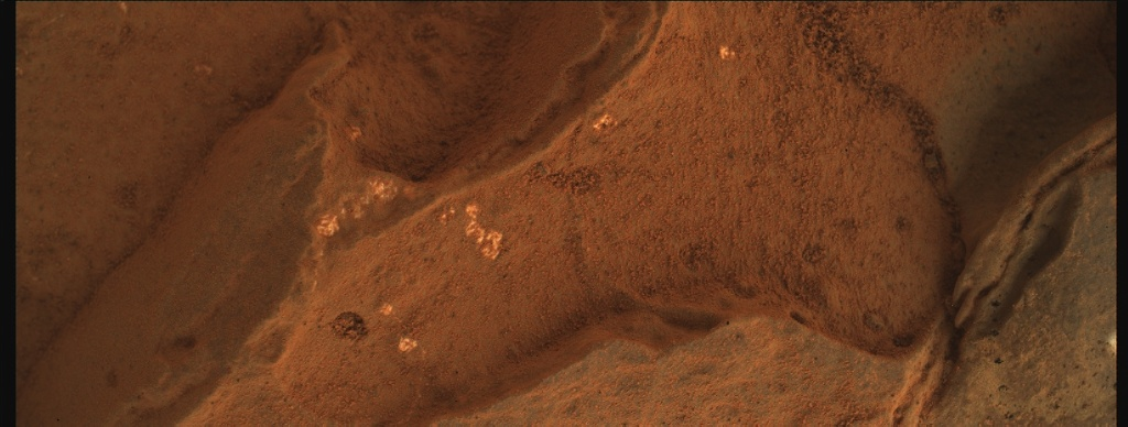 NASA's Mars rover Curiosity acquired this image using its Mars Hand Lens Imager (MAHLI) on Sol 270