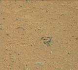 NASA's Mars rover Curiosity acquired this image using its Mast Camera (Mastcam) on Sol 351
