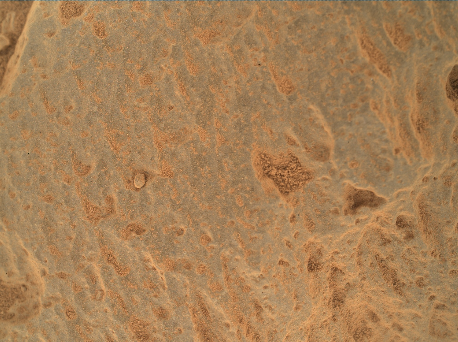 Nasa's Mars rover Curiosity acquired this image using its Mars Hand Lens Imager (MAHLI) on Sol 360