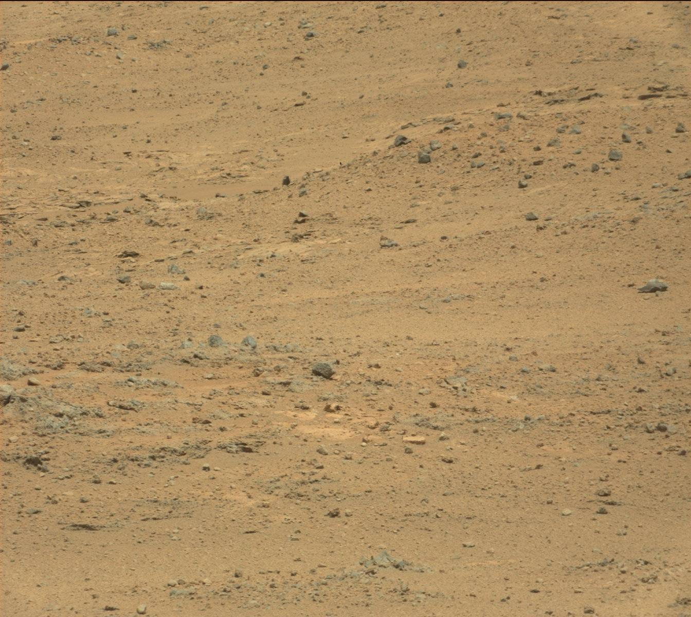 Nasa's Mars rover Curiosity acquired this image using its Mast Camera (Mastcam) on Sol 389