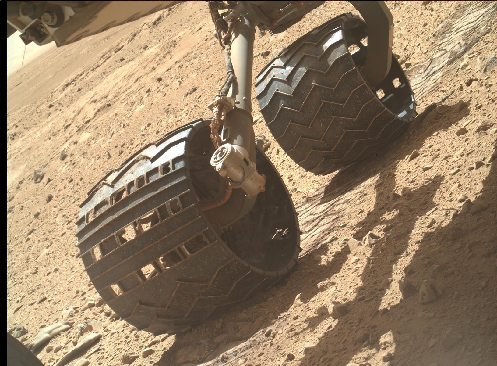 NASA ignores Fossils Found on Mars! | Secretmars.com