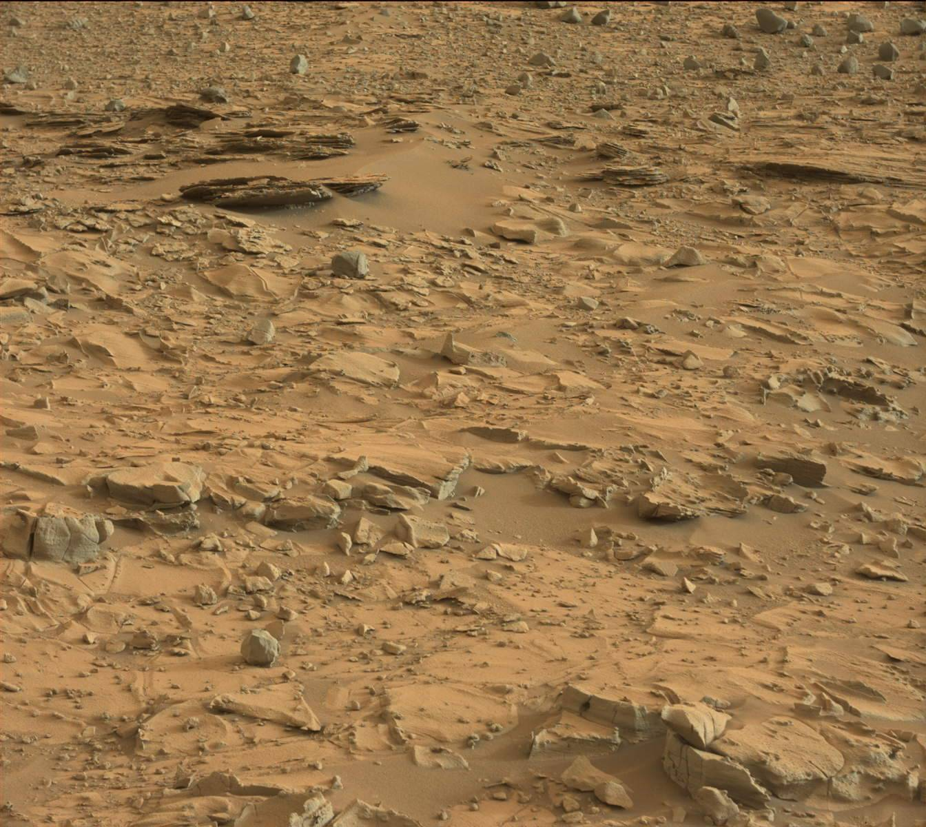 Nasa's Mars rover Curiosity acquired this image using its Mast Camera (Mastcam) on Sol 787