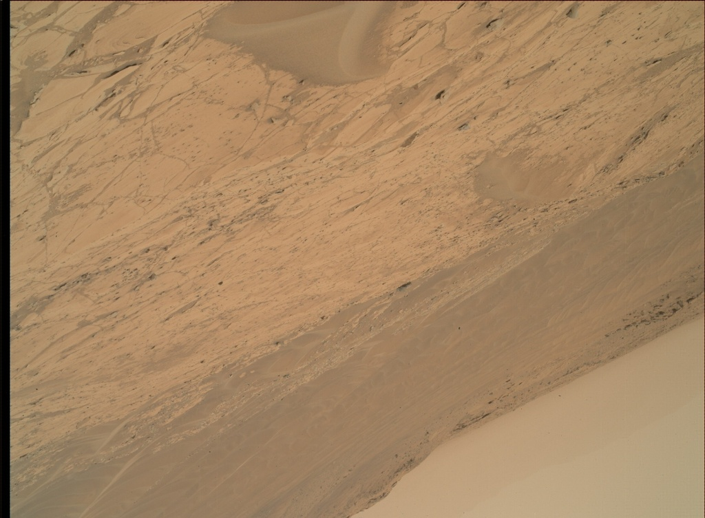 NASA's Mars rover Curiosity acquired this image using its Mars Hand Lens Imager (MAHLI) on Sol 790