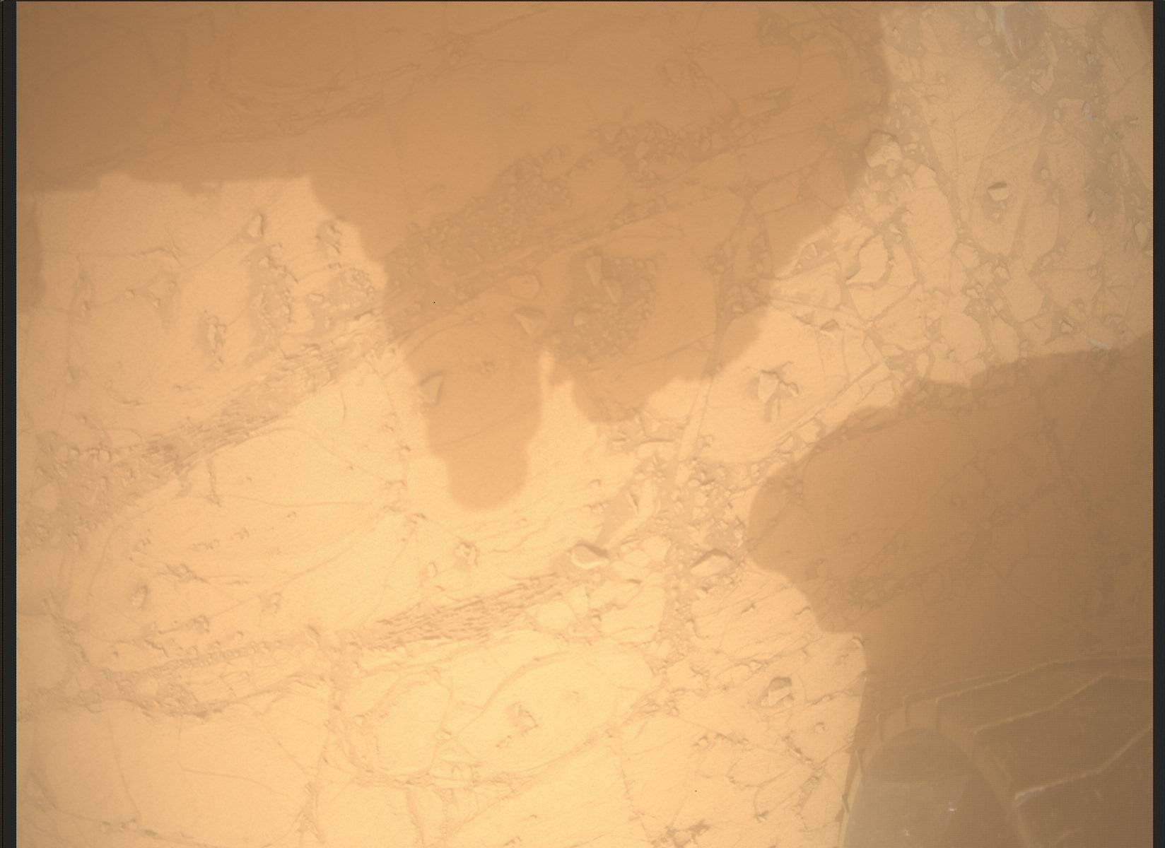 Image taken by Mars Descent Imager