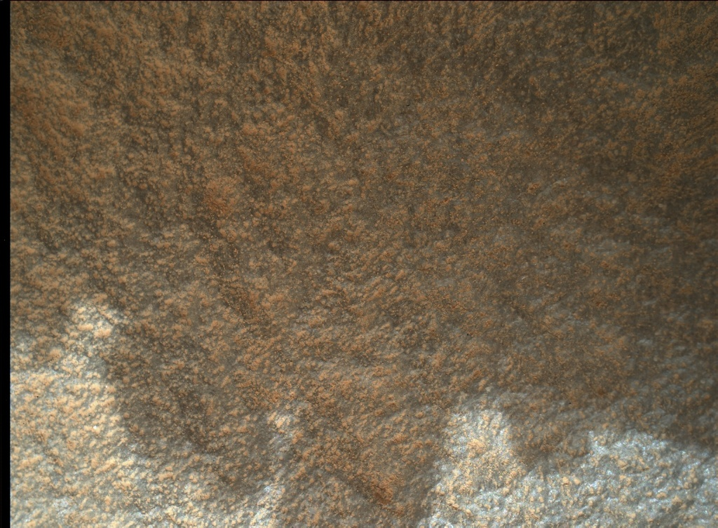 NASA's Mars rover Curiosity acquired this image using its Mars Hand Lens Imager (MAHLI) on Sol 975