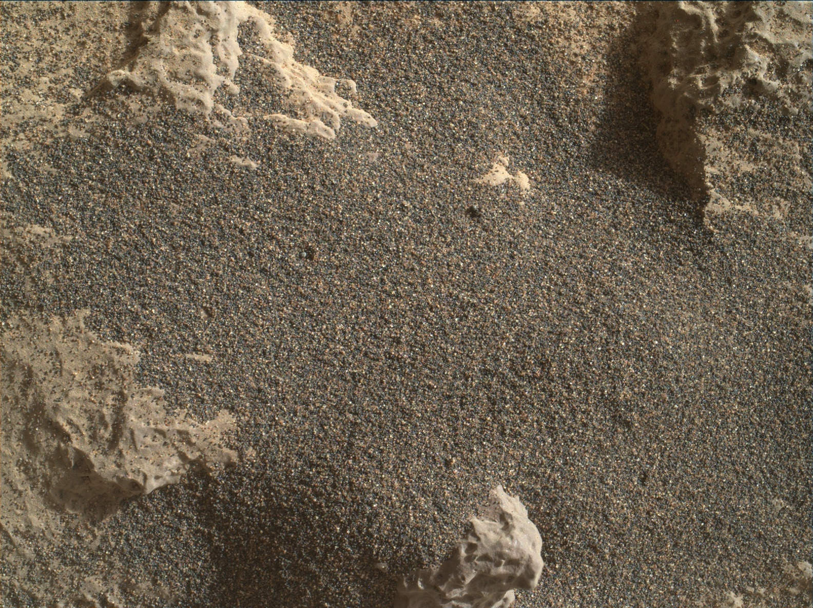 Nasa's Mars rover Curiosity acquired this image using its Mars Hand Lens Imager (MAHLI) on Sol 1253