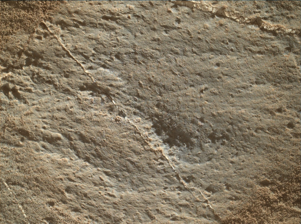 NASA's Mars rover Curiosity acquired this image using its Mars Hand Lens Imager (MAHLI) on Sol 1261