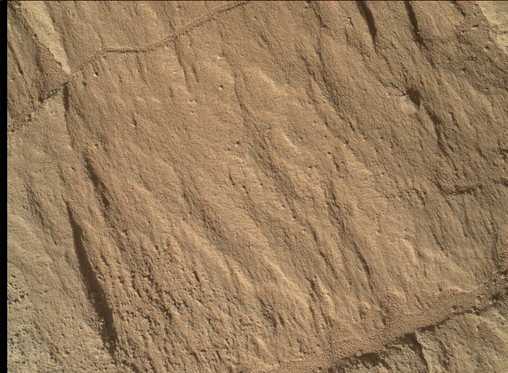 Nasa's Mars rover Curiosity acquired this image using its Mars Hand Lens Imager (MAHLI) on Sol 1318