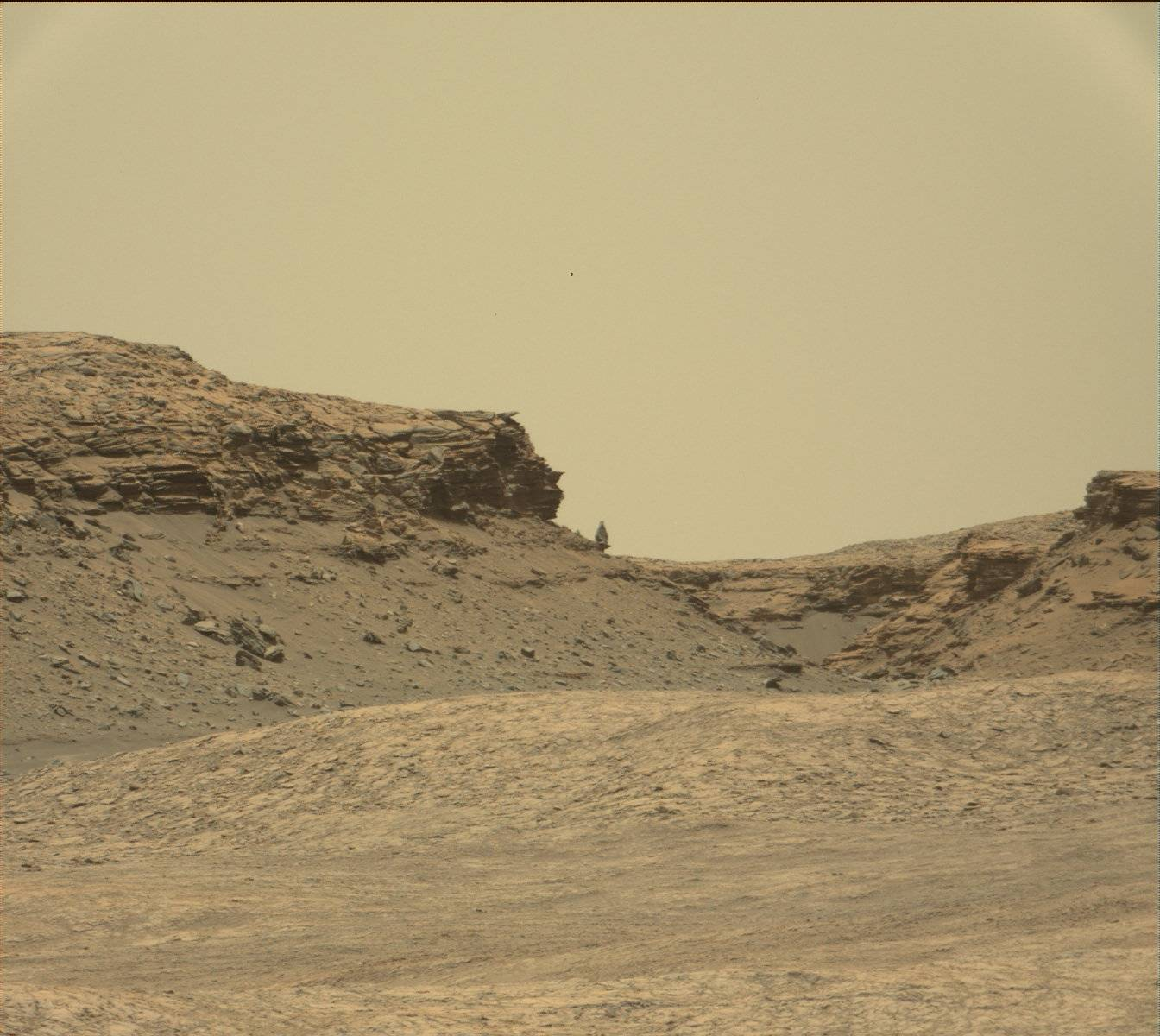 Mastcam view of Murray Buttes showing a precariously balanced boulder.
