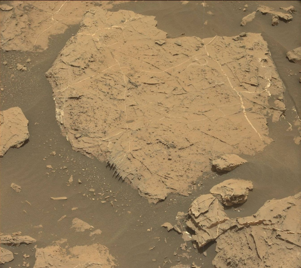 NASA's Mars rover Curiosity acquired this image using its Mast Camera (Mastcam) on Sol 1441