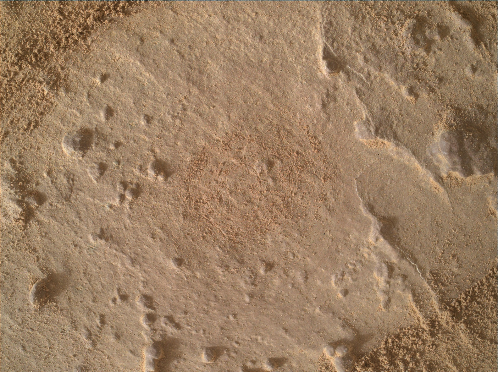 Nasa's Mars rover Curiosity acquired this image using its Mars Hand Lens Imager (MAHLI) on Sol 1445