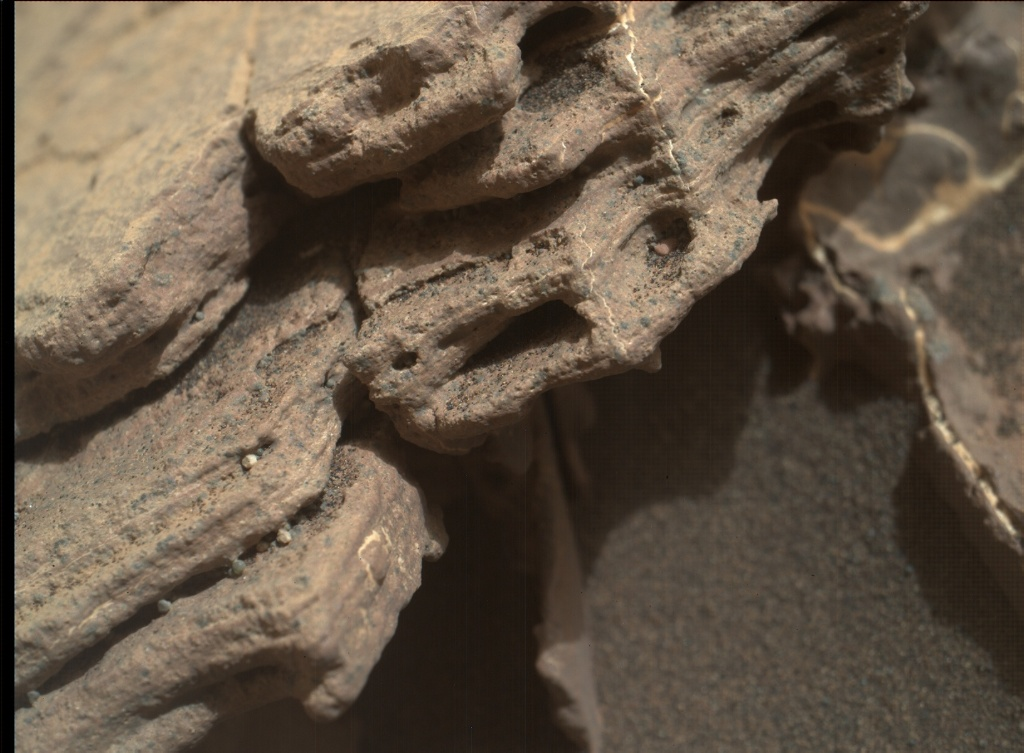 NASA's Mars rover Curiosity acquired this image using its Mars Hand Lens Imager (MAHLI) on Sol 1523