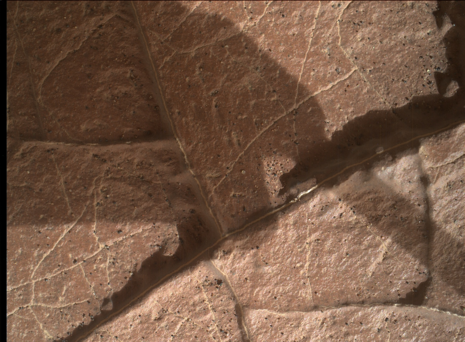 Nasa's Mars rover Curiosity acquired this image using its Mars Hand Lens Imager (MAHLI) on Sol 1566