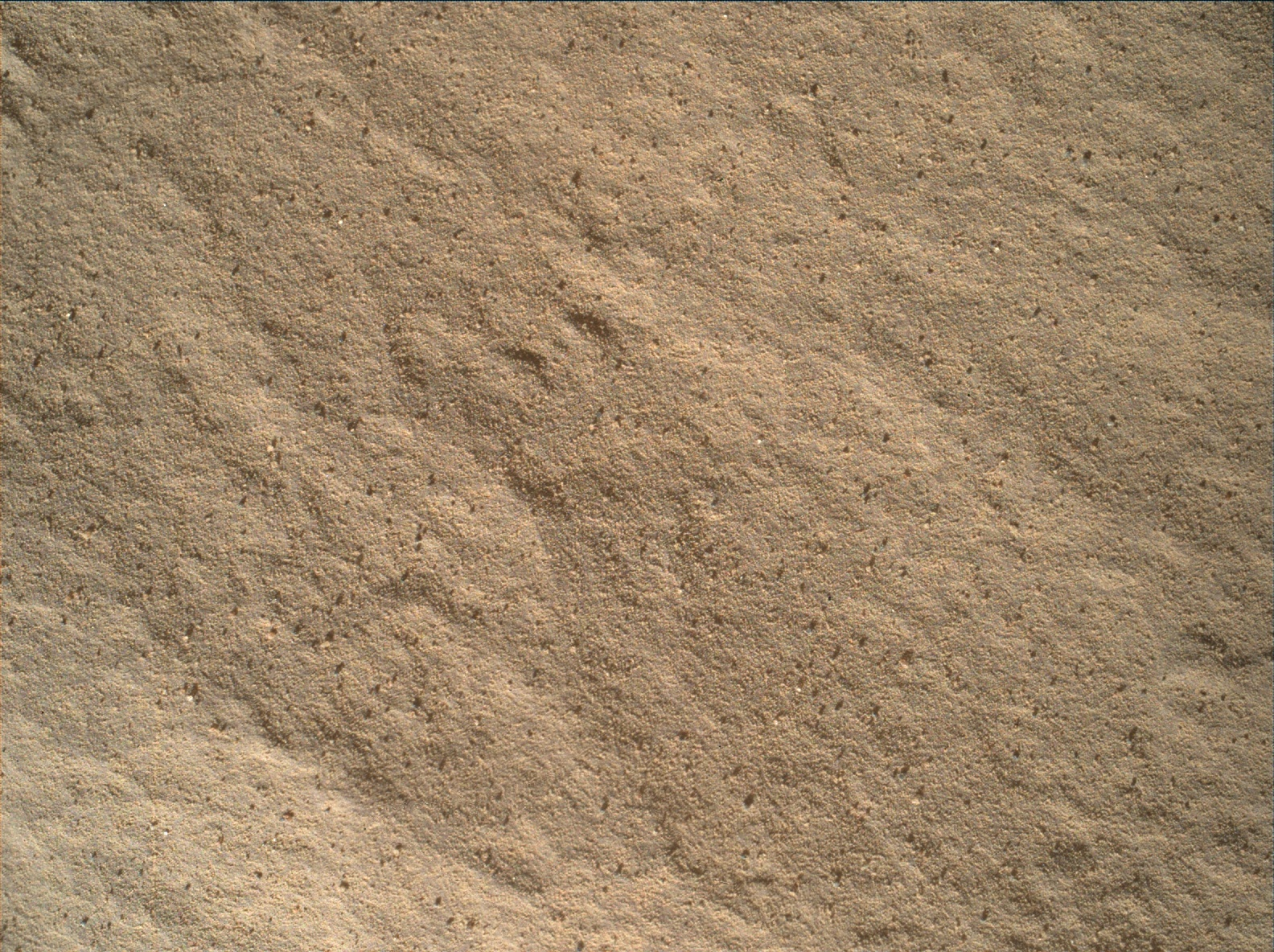 Nasa's Mars rover Curiosity acquired this image using its Mars Hand Lens Imager (MAHLI) on Sol 1826