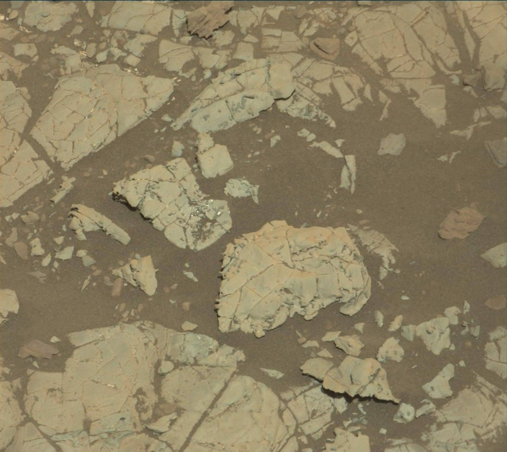 NASA's Mars rover Curiosity acquired this image using its Mast Camera (Mastcam) on Sol 1905