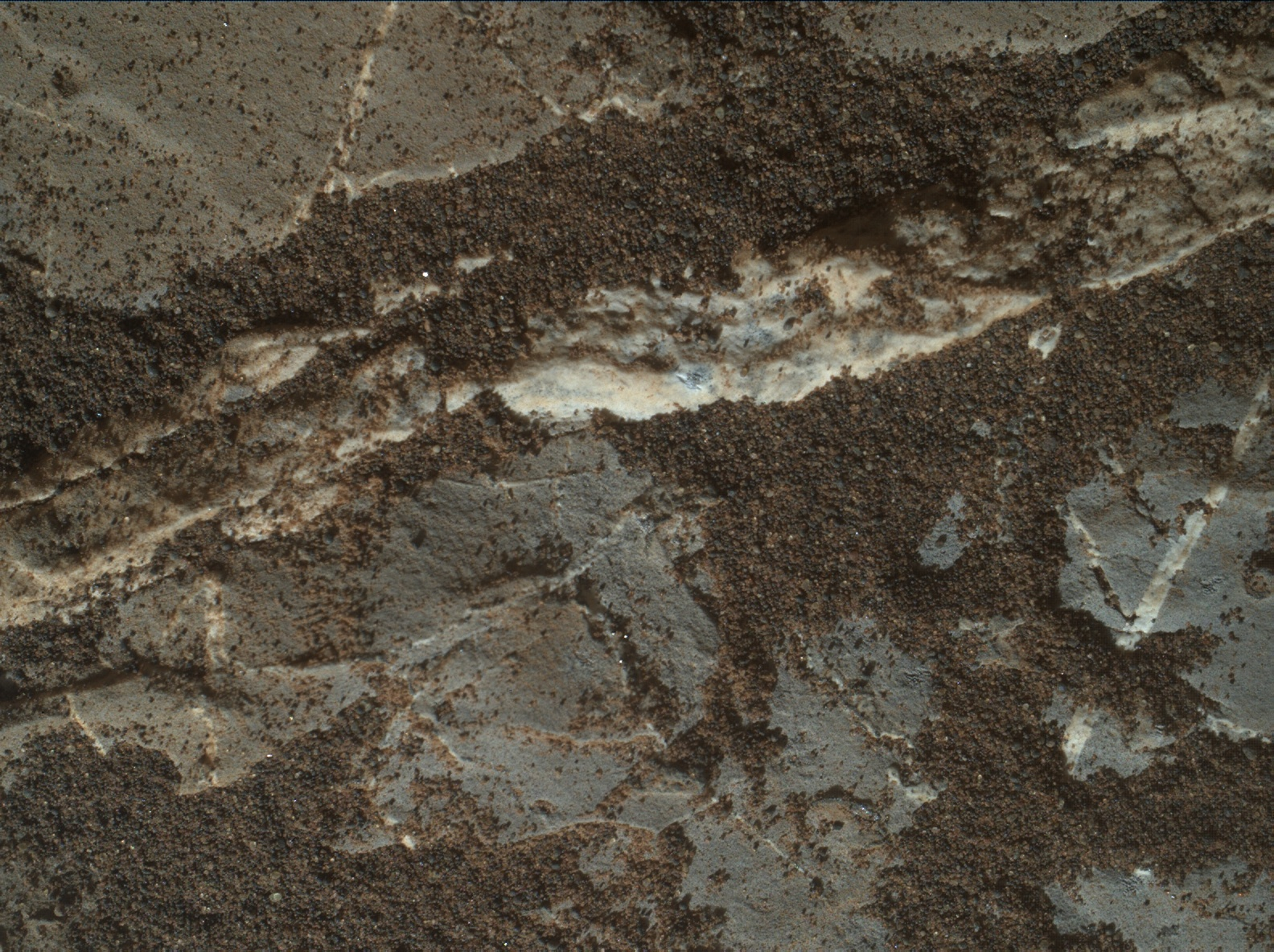 Nasa's Mars rover Curiosity acquired this image using its Mars Hand Lens Imager (MAHLI) on Sol 1975