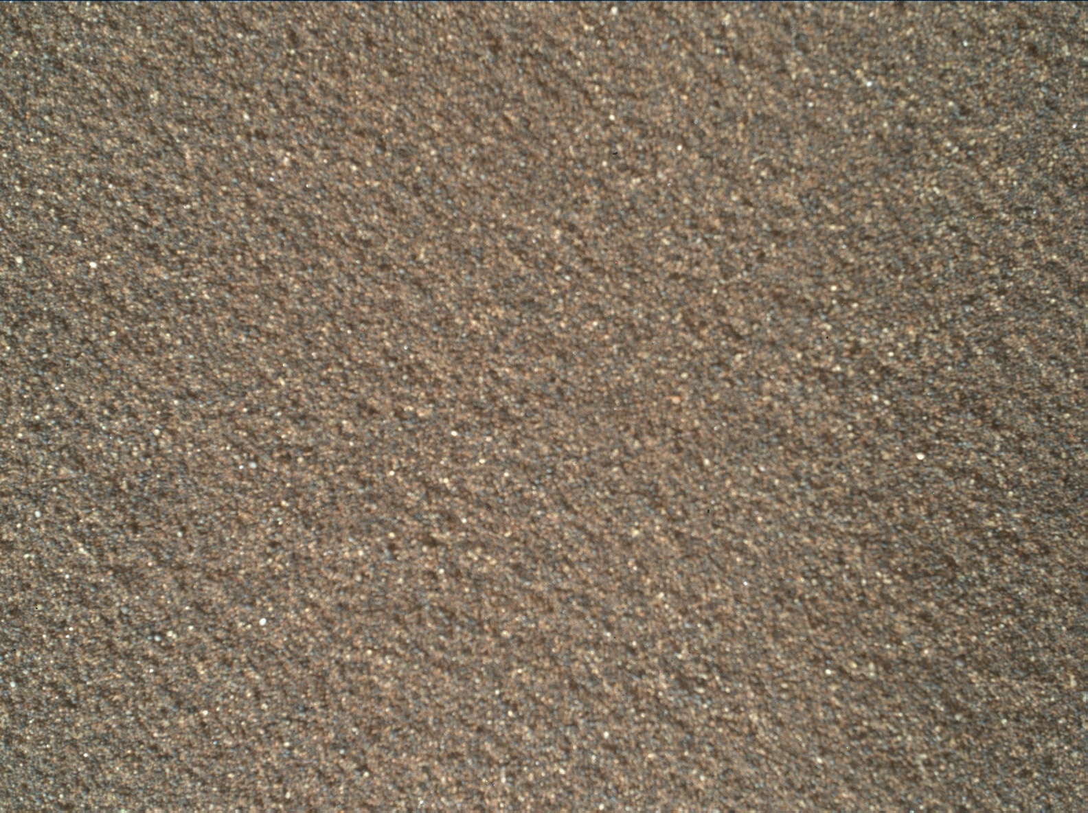 Nasa's Mars rover Curiosity acquired this image using its Mars Hand Lens Imager (MAHLI) on Sol 2025