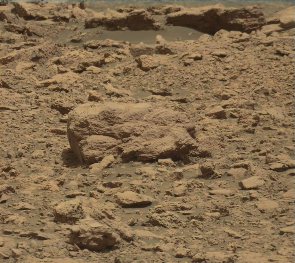 NASA's Mars rover Curiosity acquired this image using its Mast Camera (Mastcam) on Sol 2029