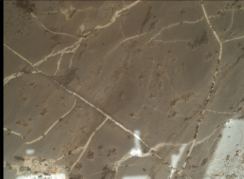 NASA's Mars rover Curiosity acquired this image using its Mars Hand Lens Imager (MAHLI) on Sol 2223