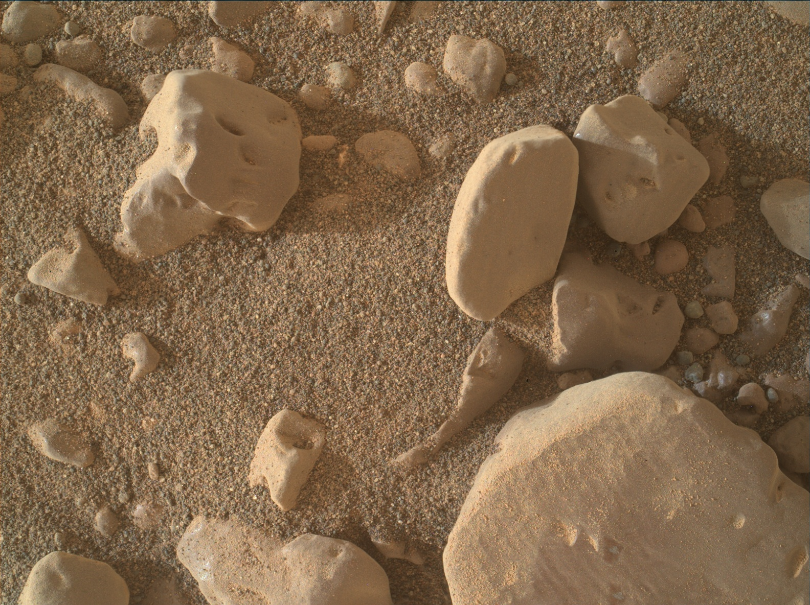 Nasa's Mars rover Curiosity acquired this image using its Mars Hand Lens Imager (MAHLI) on Sol 2309