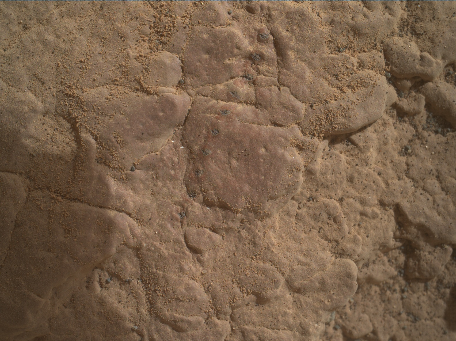 Nasa's Mars rover Curiosity acquired this image using its Mars Hand Lens Imager (MAHLI) on Sol 2356