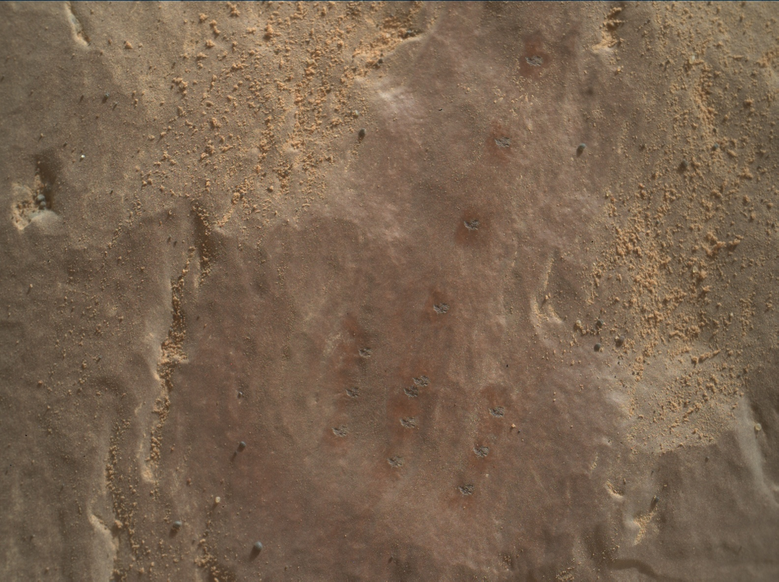 Nasa's Mars rover Curiosity acquired this image using its Mars Hand Lens Imager (MAHLI) on Sol 2363