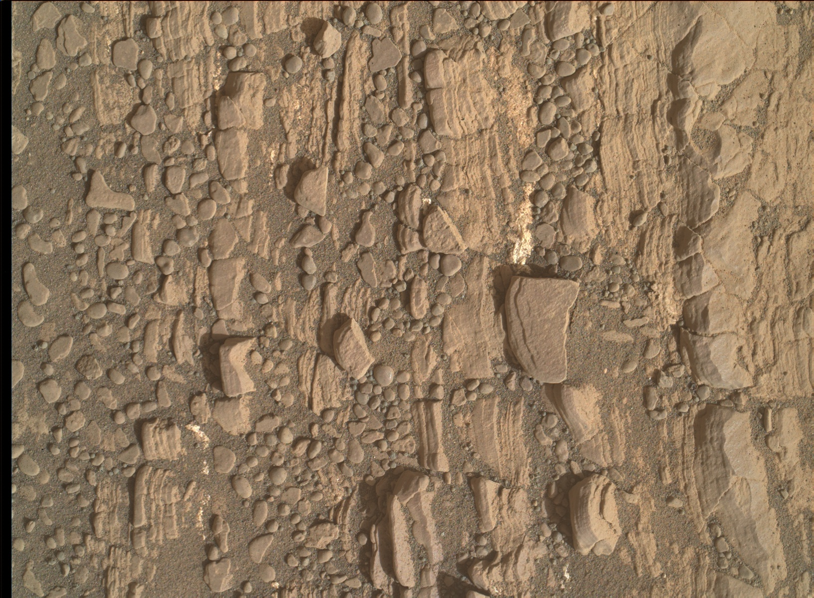Nasa's Mars rover Curiosity acquired this image using its Mars Hand Lens Imager (MAHLI) on Sol 2424