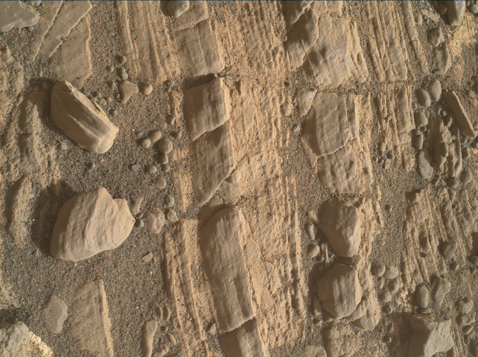Nasa's Mars rover Curiosity acquired this image using its Mars Hand Lens Imager (MAHLI) on Sol 2426
