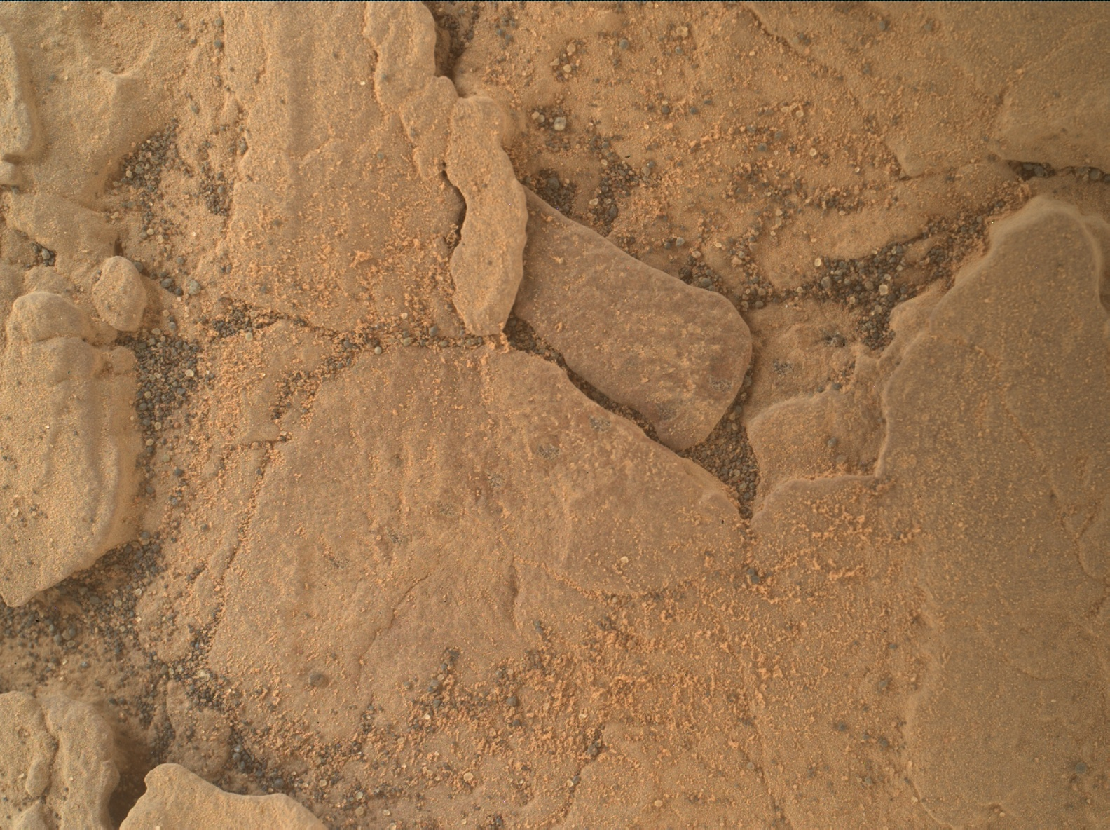 Nasa's Mars rover Curiosity acquired this image using its Mars Hand Lens Imager (MAHLI) on Sol 2461