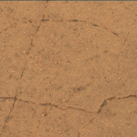 Nasa's Mars rover Curiosity acquired this image using its Mars Hand Lens Imager (MAHLI) on Sol 2463