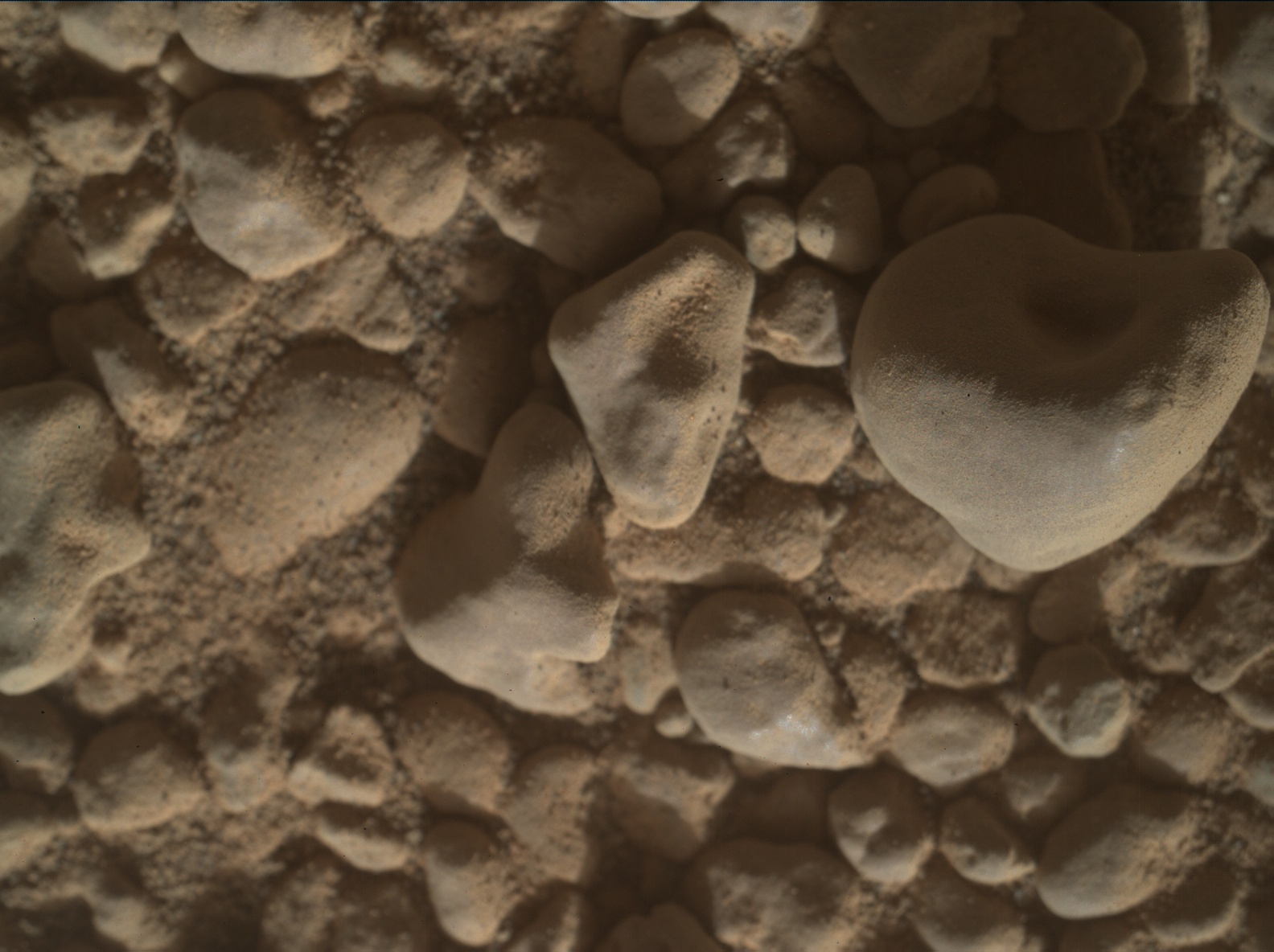 Nasa's Mars rover Curiosity acquired this image using its Mars Hand Lens Imager (MAHLI) on Sol 2558