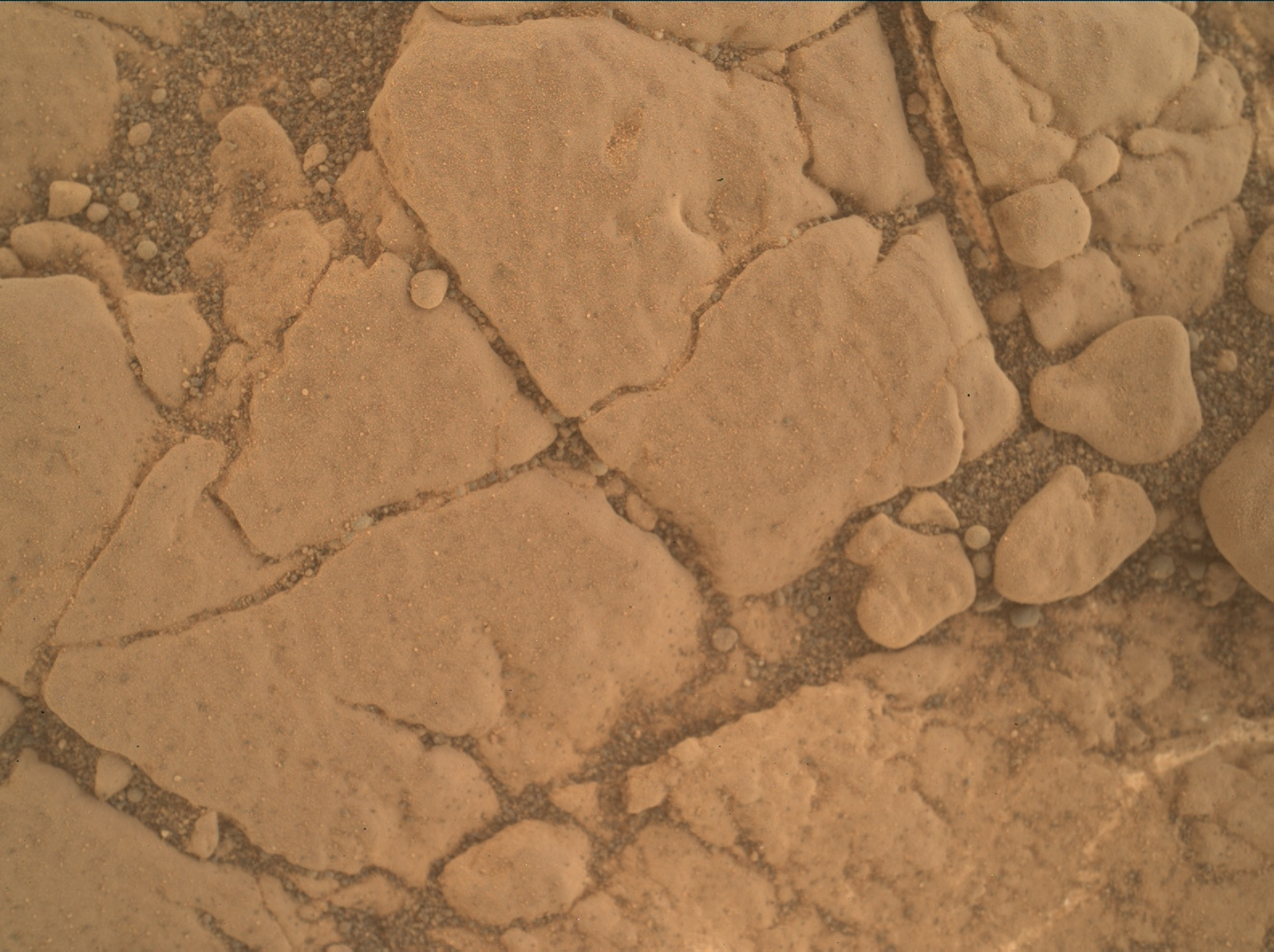 Nasa's Mars rover Curiosity acquired this image using its Mars Hand Lens Imager (MAHLI) on Sol 2577