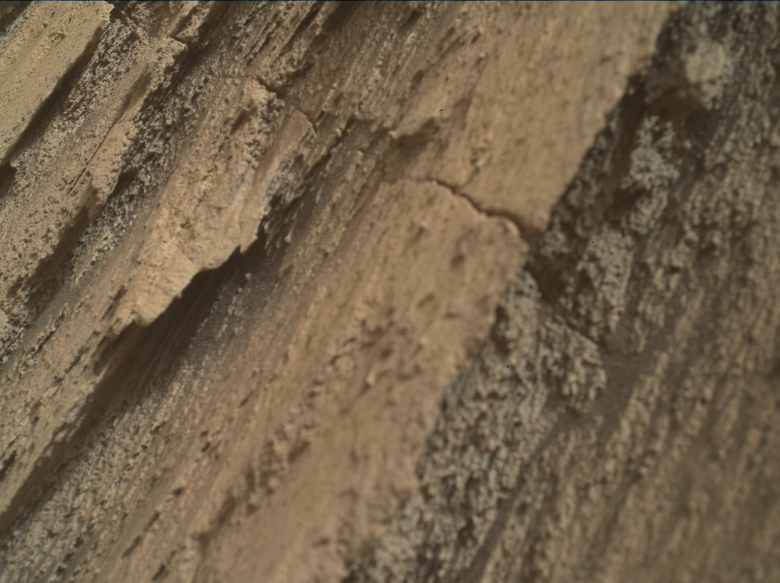 Nasa's Mars rover Curiosity acquired this image using its Mars Hand Lens Imager (MAHLI) on Sol 2581