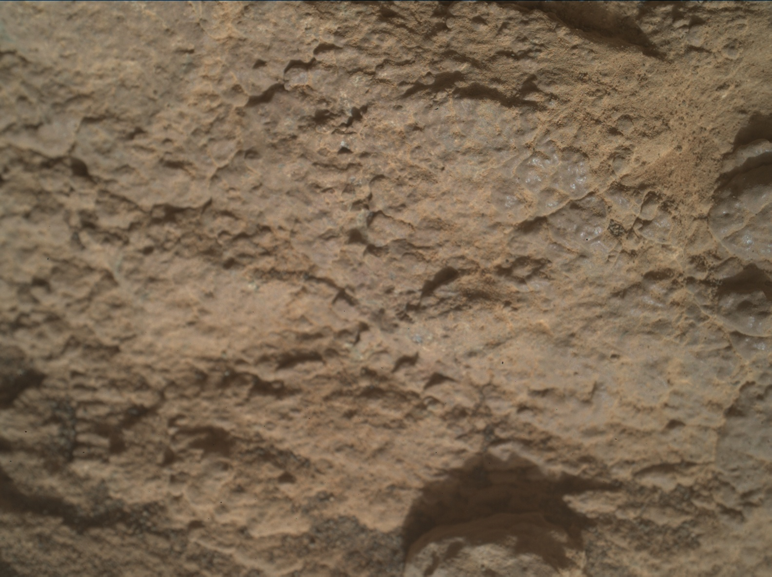 Nasa's Mars rover Curiosity acquired this image using its Mars Hand Lens Imager (MAHLI) on Sol 2591