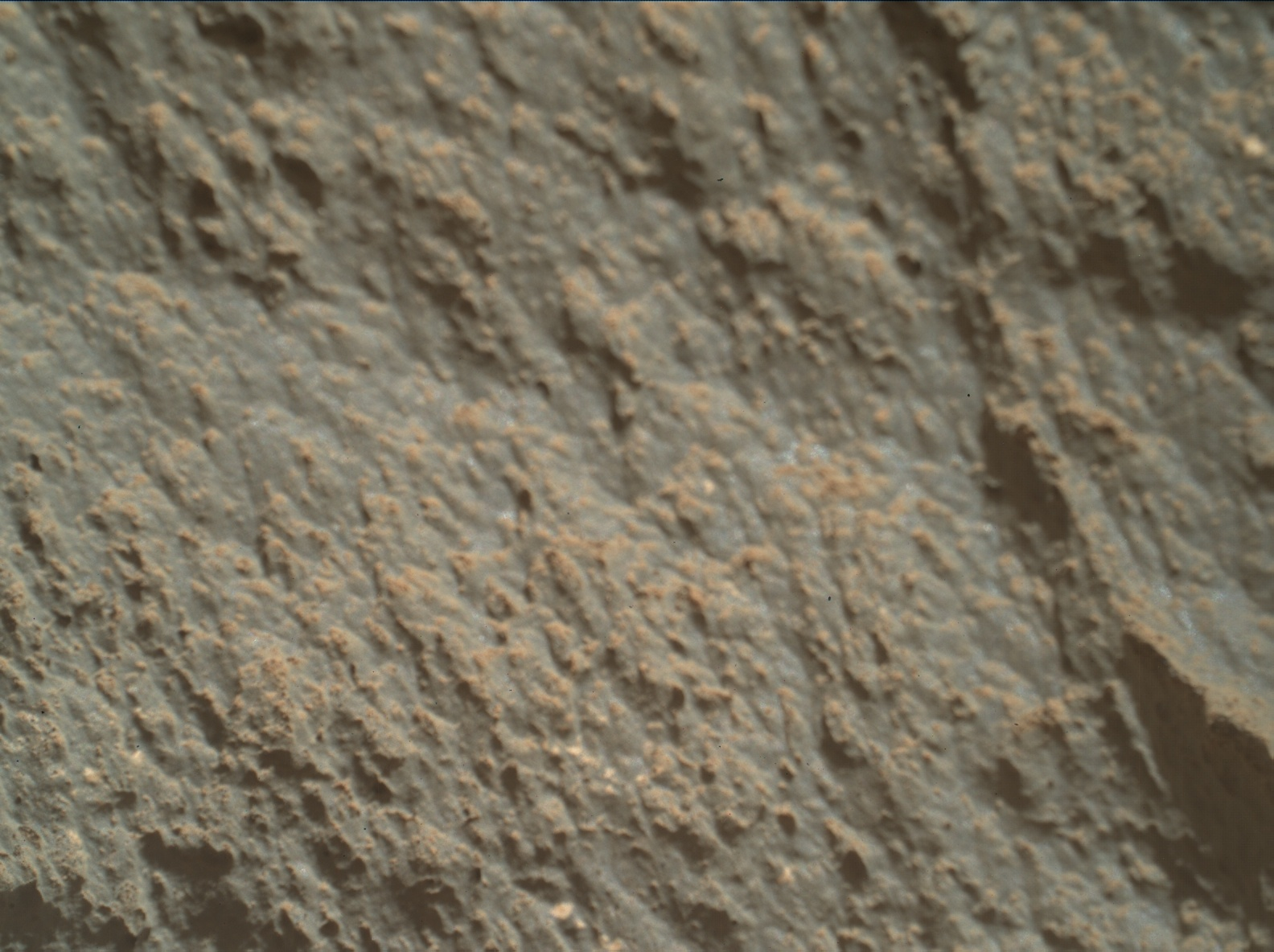 Nasa's Mars rover Curiosity acquired this image using its Mars Hand Lens Imager (MAHLI) on Sol 2632