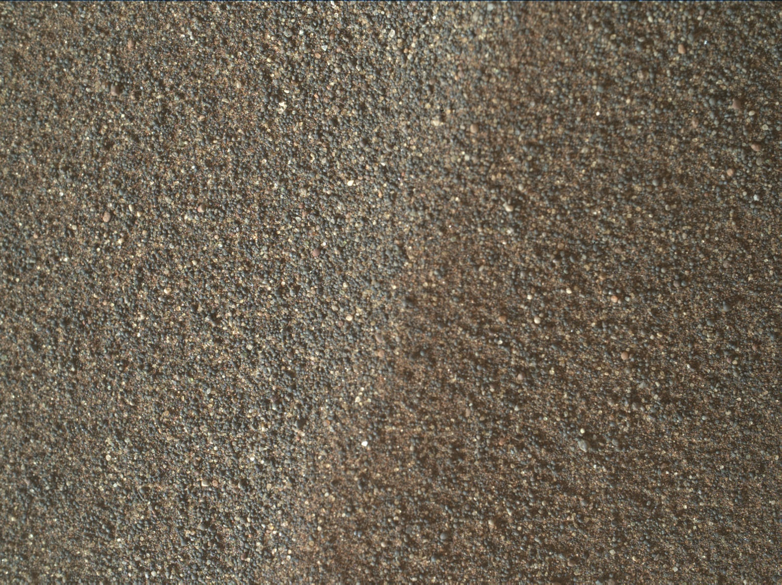 Nasa's Mars rover Curiosity acquired this image using its Mars Hand Lens Imager (MAHLI) on Sol 2994